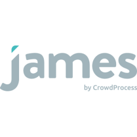 Logo crowdprocess web